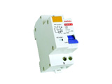 DZ30LE Earth Leakage Circuit Breaker with Over Current Protection