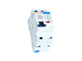 C60NLE Earth Leakage Circuit Breaker with Over Current Protection